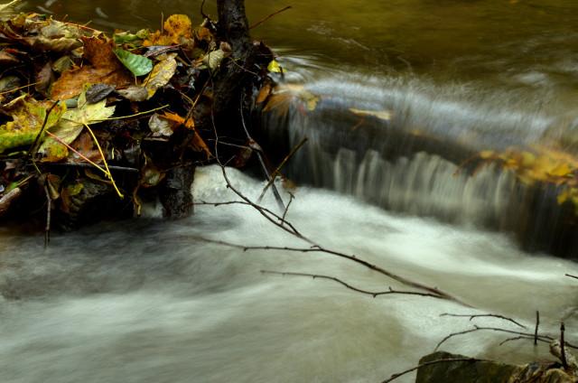 Když jdete kolem potoka můžete fotoaparátem zachytit velmi hezké scenérie