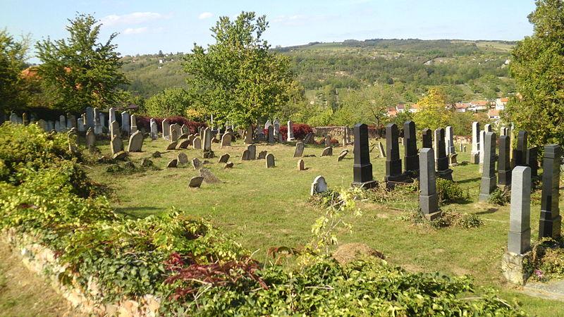 Dolní_Kounice_-_židovský_hřbitov