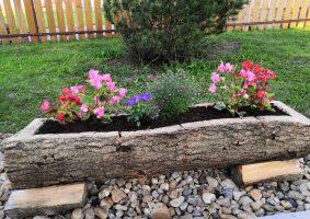 Jak jsem dělal květináč z kmene stromu